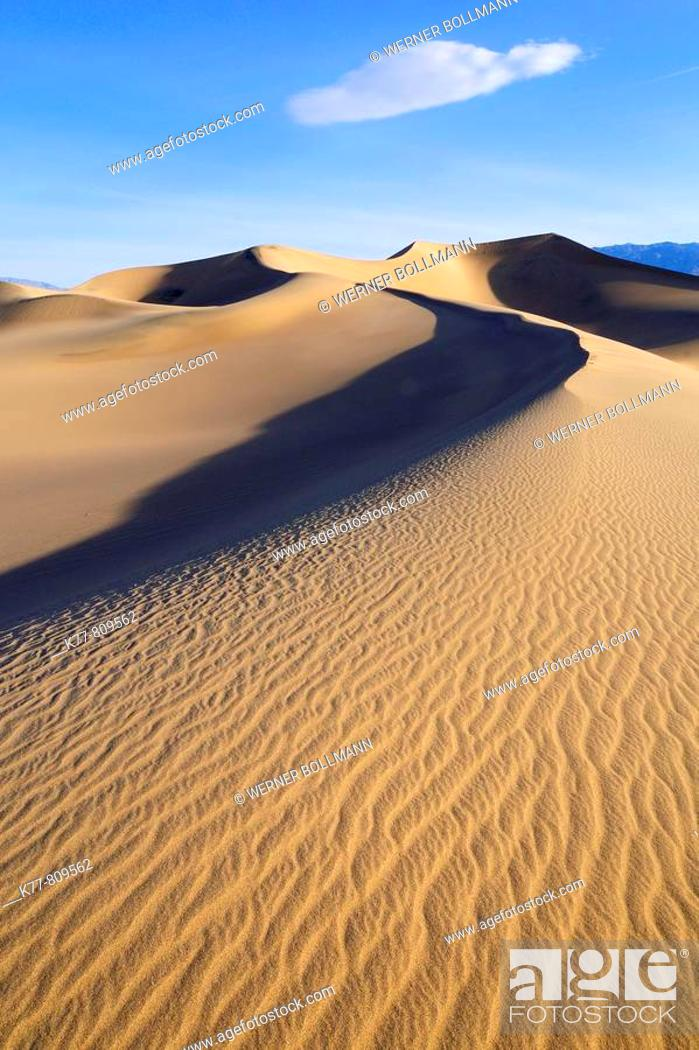 Stock Photo: Dunes in the Death Valley. Death Valley N.P., California, USA.
