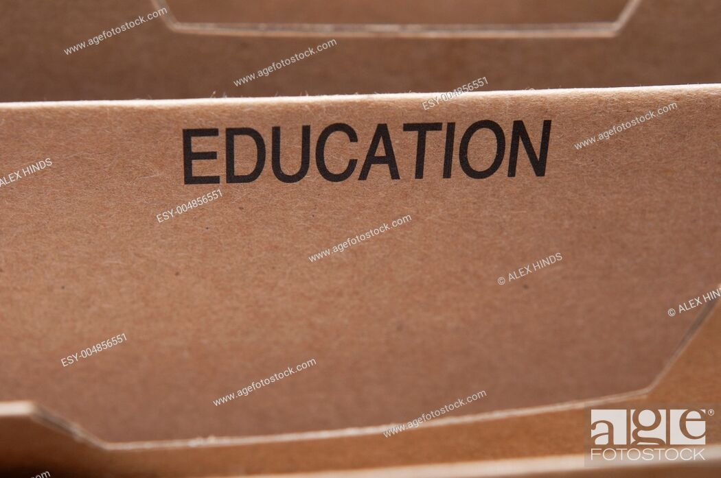 Stock Photo: Education section tab in folding file.