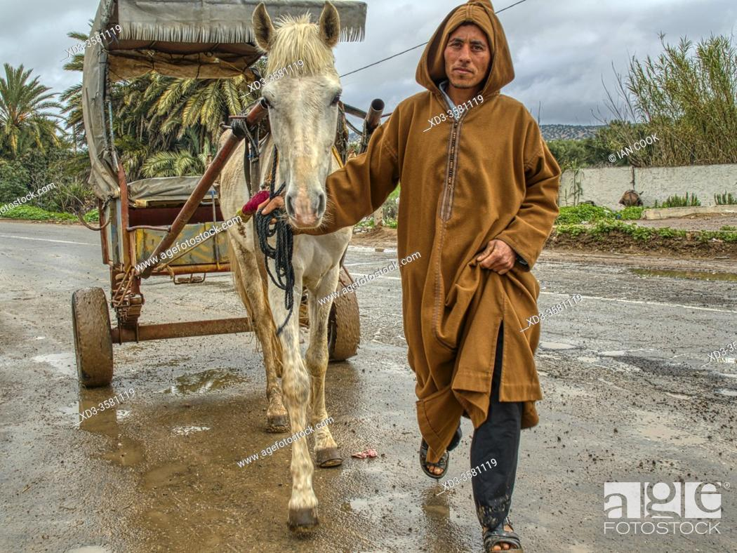 Imagen: man with a horse and cart at the Sunday Berber Market, Had Draa, Essaouira Province, Morocco.