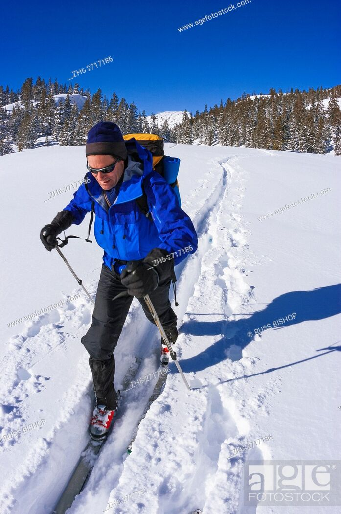Imagen: Backcountry skier in fresh snow below Tioga Pass, Inyo National Forest, Sierra Nevada Mountains, California USA.