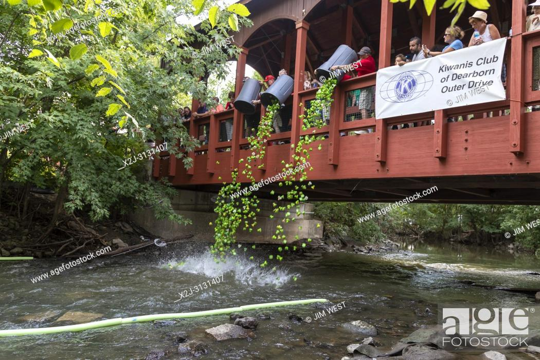 Imagen: Dearborn, Michigan - Plastic turtles start a race in the Rouge River during the annual Dearborn homecoming festival. The event is a fundraiser for Kiwanis Club.