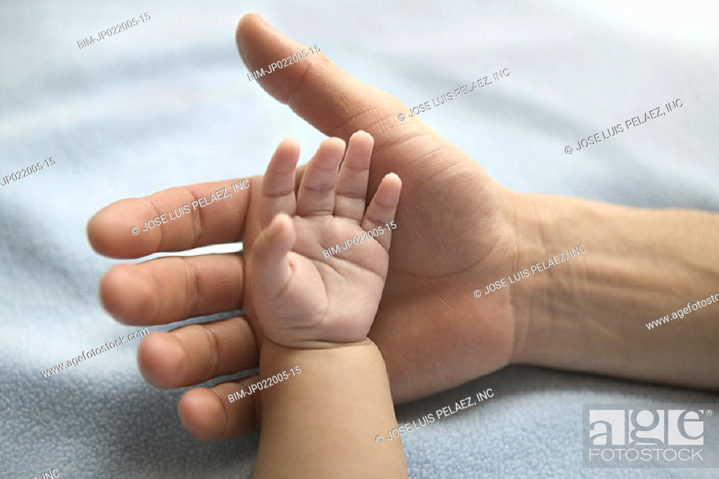 Stock Photo: Close up of father holding baby's hand.