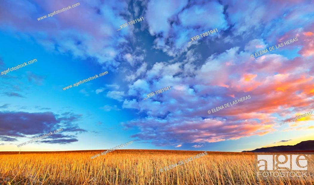 Stock Photo: Ploughed field landscape. Northwest of Guadalajara province. Castille La Mancha. Spain.