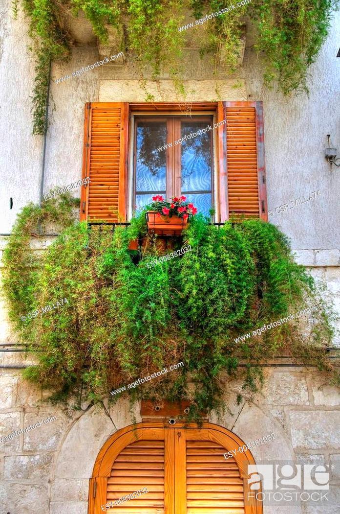 Stock Photo: Flowering balcony.