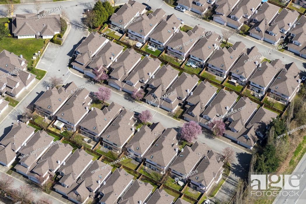 Stock Photo: Canada, BC, Delta. Aerial view of suburban homes.