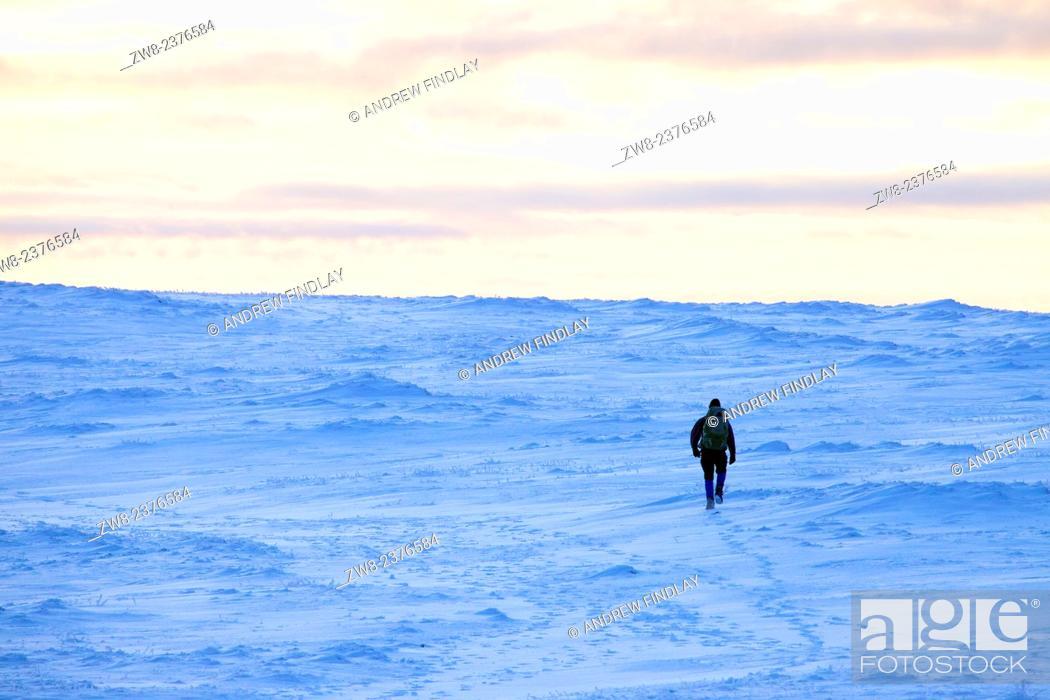 Stock Photo: Hiker walking across snow field summit of Lake District Fell. Cumbria England UK.