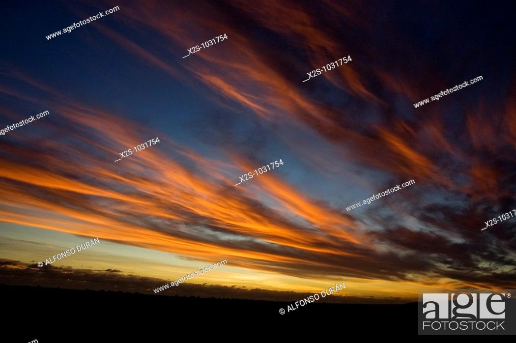 Stock Photo: Red sky at sunset, Eyre Highway, Western Australia, Australia.