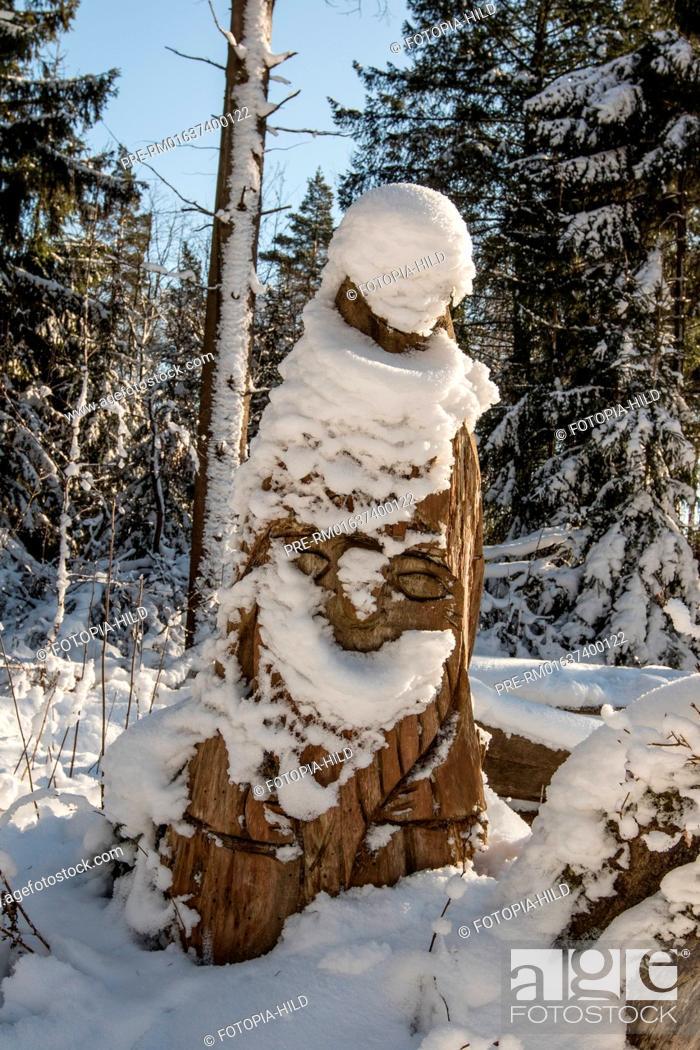 Imagen: Winter at the Bramwald, Göttingen district, Lower Saxony, Germany / Winter im Bramwald, Landkreis Göttingen, Niedersachsen, Deutschland.