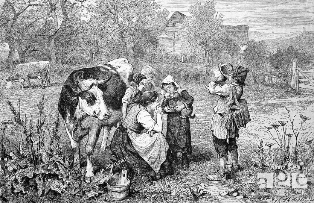 Imagen: Savoyards children with a cow, Savoy, France, historic wood engraving, ca. 1880.