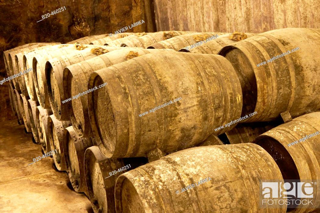 Stock Photo: Maturing Rioja wine in oak casks. Bodegas Virgen del Valle, Samaniego, Rioja Alavesa, Euskadi.