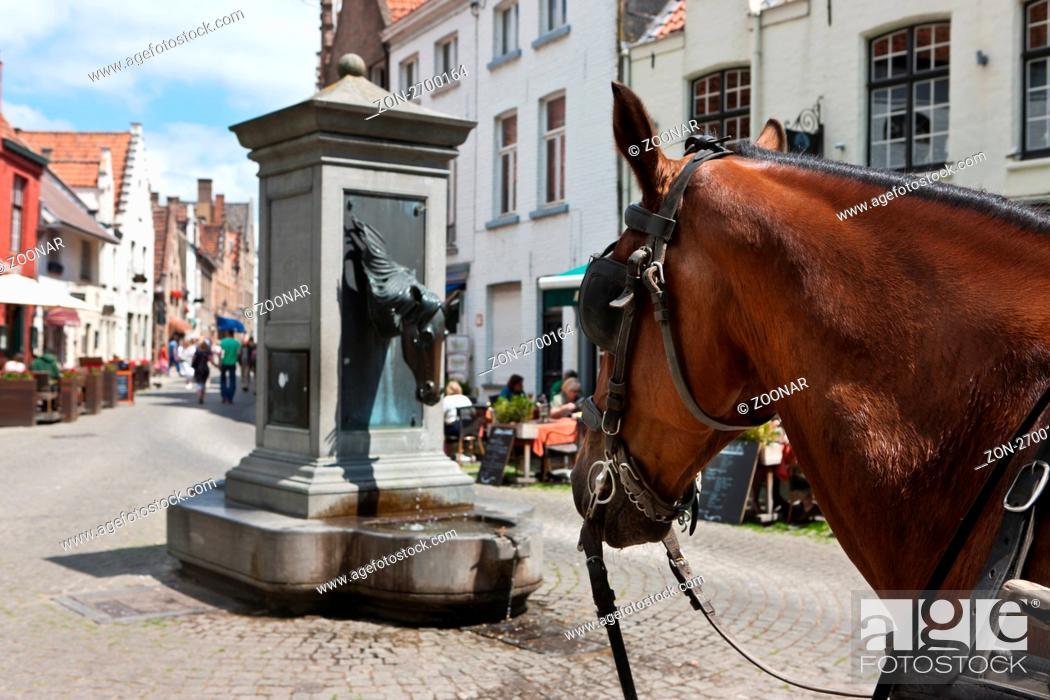 Brunnen zur Pferdetränke der Touristenkutschen am Wijngaardplein ...