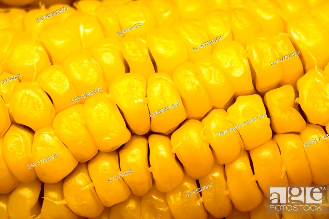 Stock Photo: Grains of ripe corn cob, close up background.