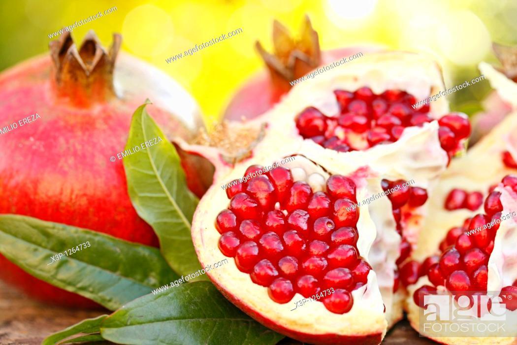 Stock Photo: Pomegranates.
