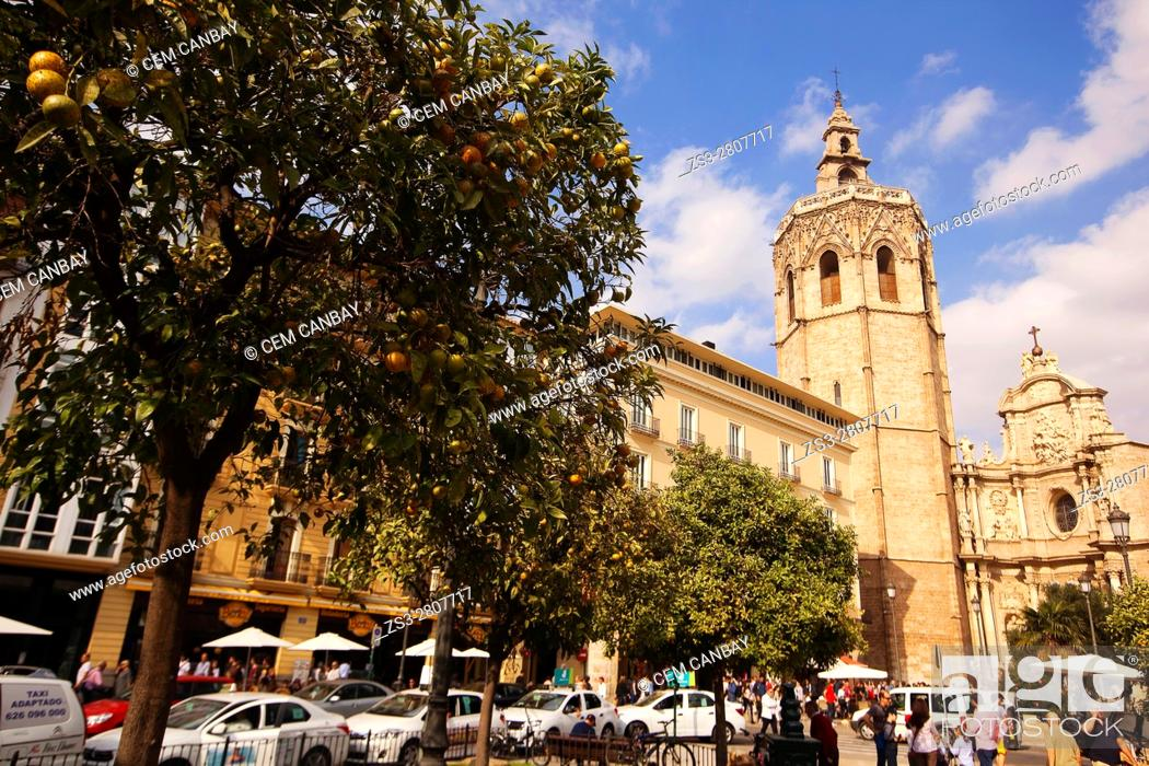 Imagen: View to the'Miquelet' or 'Miguelete' tower (built in 14th century), Cathedral with orange trees in the foreground, Valencia, Spain, Europe.
