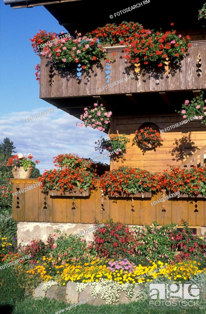 Stock Photo: flowers, Switzerland, Berne, Europe, Beautiful flowers in window boxes on the balconies decorate a farm house in Belpberg in the Canton of Bern.