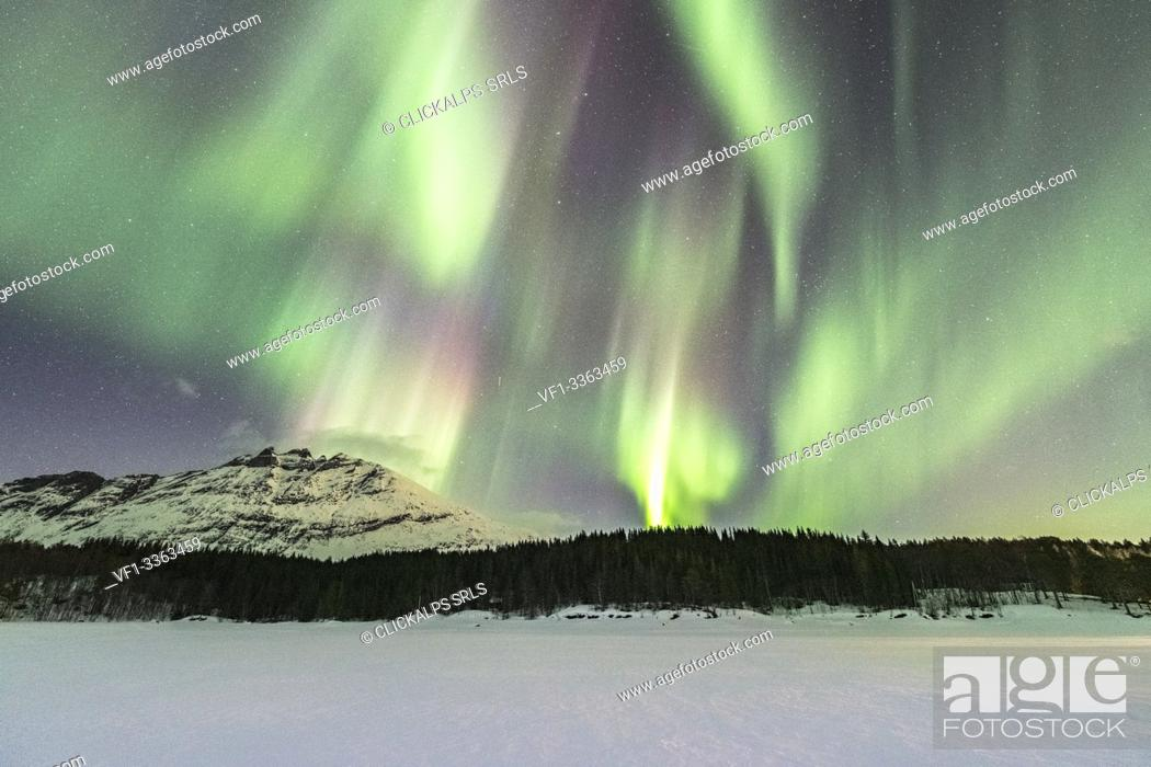Imagen: Northern lights in the sky above Skoddebergvatnet lake. Grovfjord, Troms county, Northern Norway, Norway.