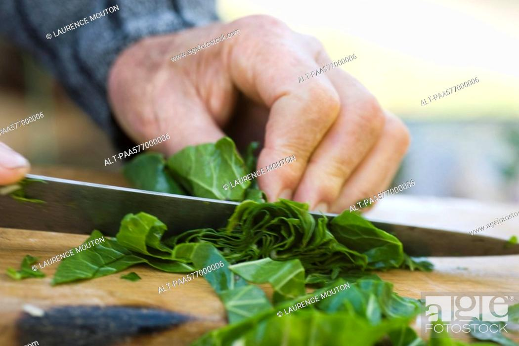 Stock Photo: Chopping chard greens.