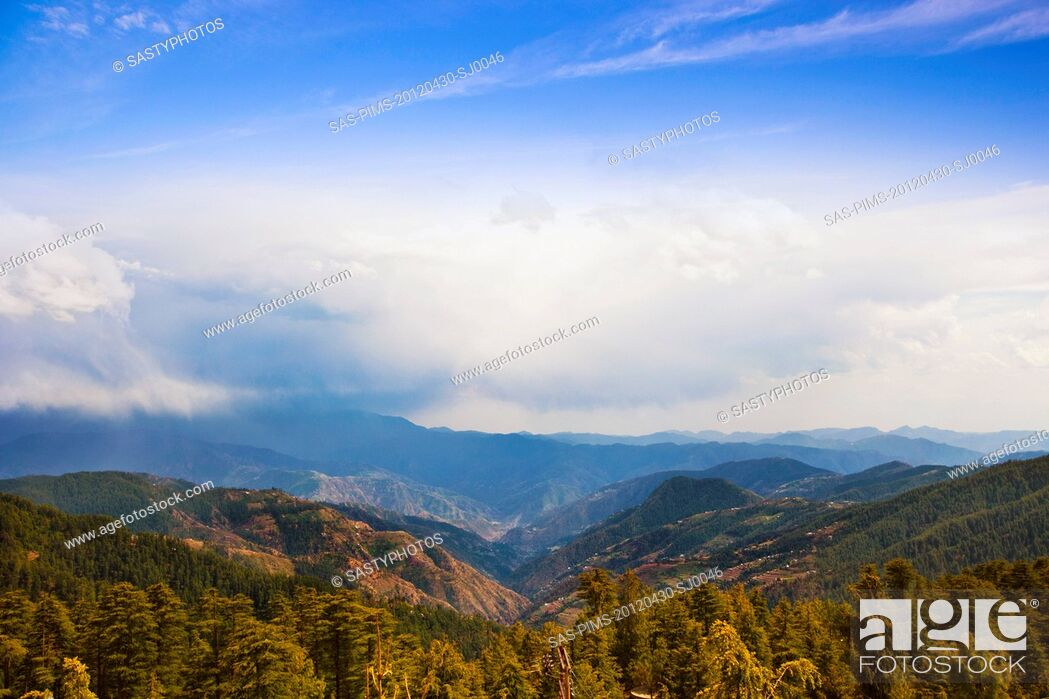 Imagen: Trees with mountain range in the background, Kufri, Shimla, Himachal Pradesh, India.