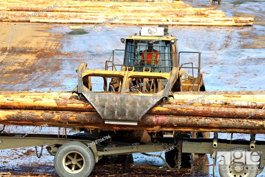 Stock Photo: Loader unoading logging truck at sawmil, Ladysmith, Vancouver Island, British Columbia.
