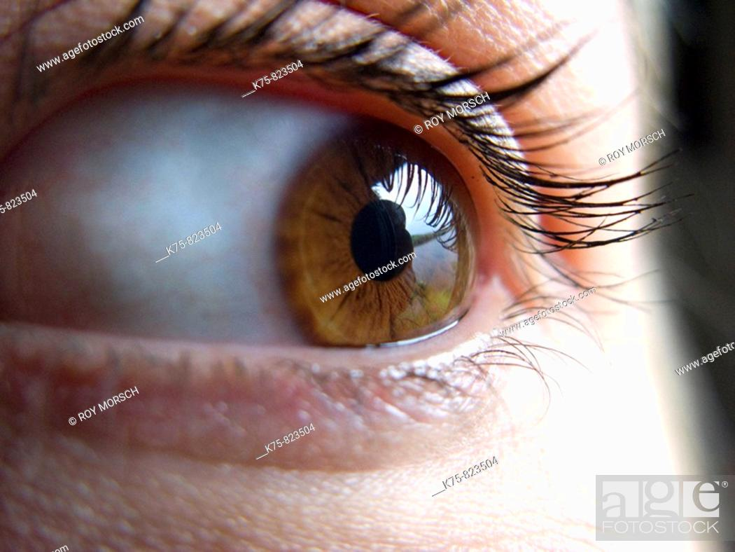 Stock Photo: Close-up of an eye.