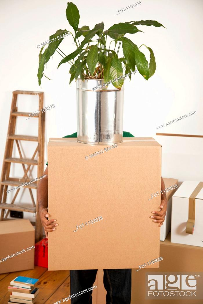 Stock Photo: A man carrying a moving box with a plant on top, obscured face.