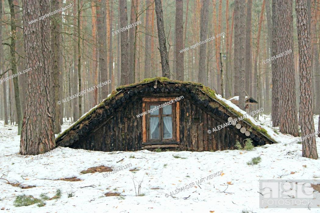 Stock Photo: Partisan dugout in winter forest. Earth-house built by Soviet partisans in Ukrainian forest during Secont World War. War museum in forest.
