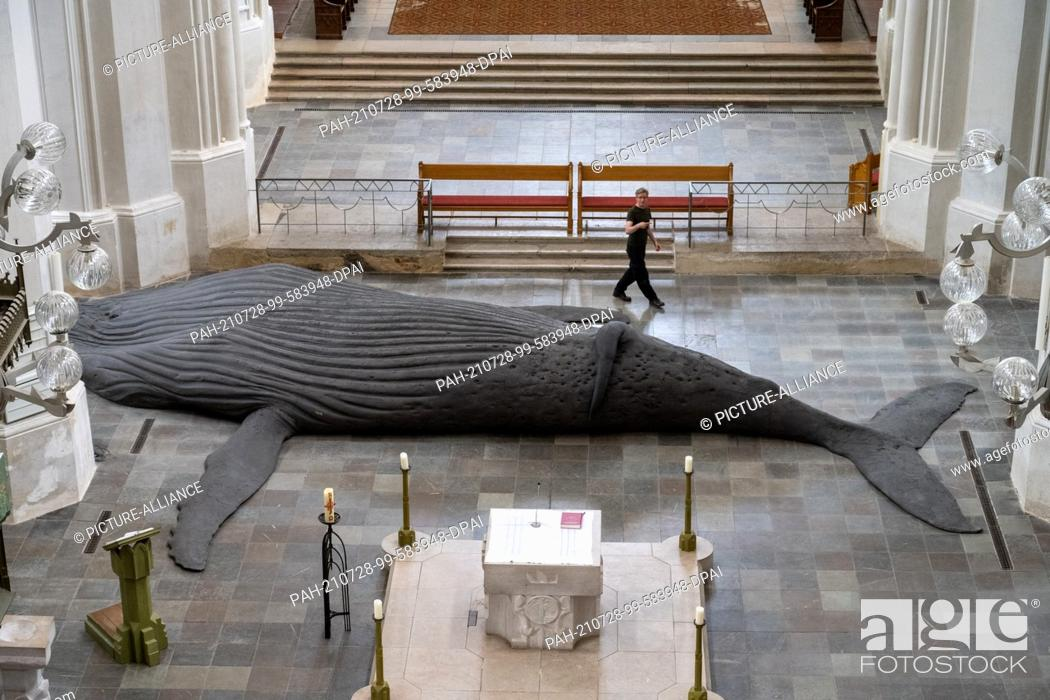 Imagen: 28 July 2021, Mecklenburg-Western Pomerania, Greifswald: Gil Shachar, an artist from Isarel, is setting up a whale sculpture of a humpback whale in St.