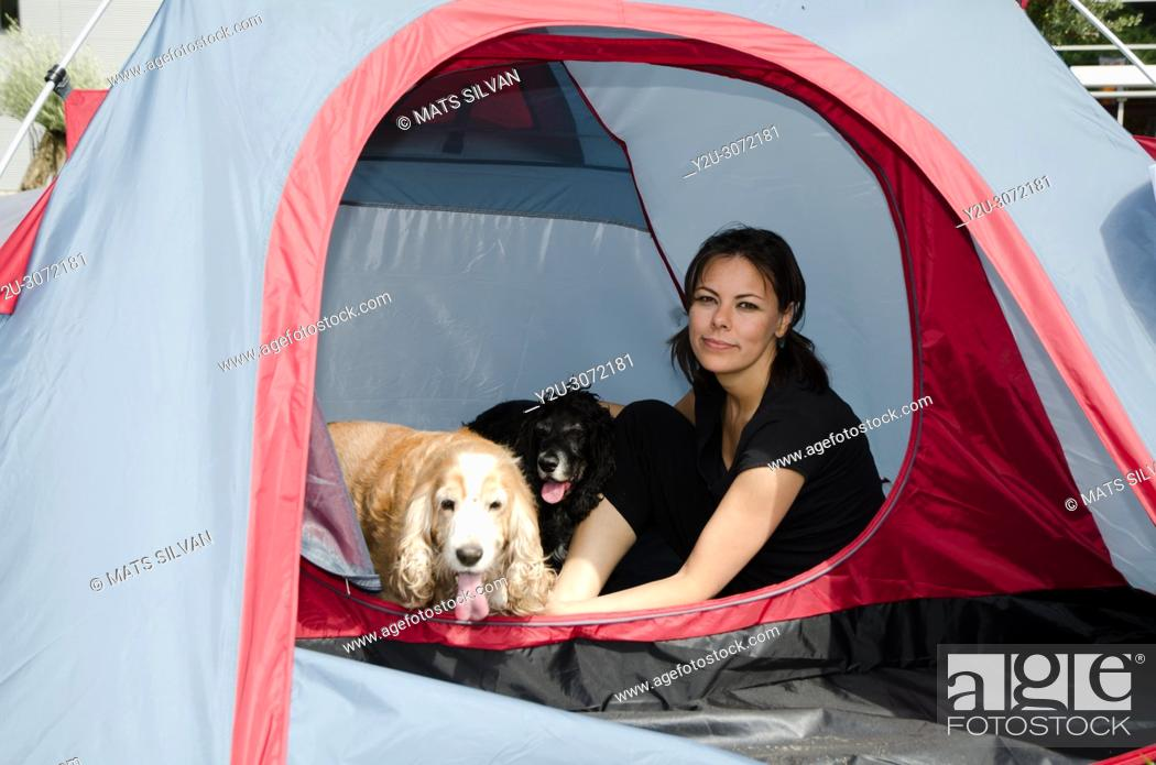 Stock Photo: Woman Sitting Inside a Tent with Two Cocker Spaniel Dogs in Locarno, Switzerland.
