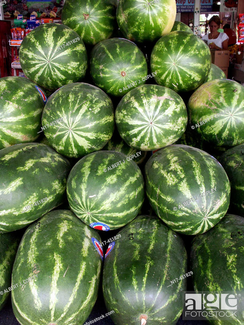 Stock Photo: Watermelons.