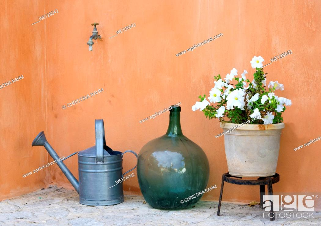 Stock Photo: Garden still life with watering can, round vase and pot with white petunias.
