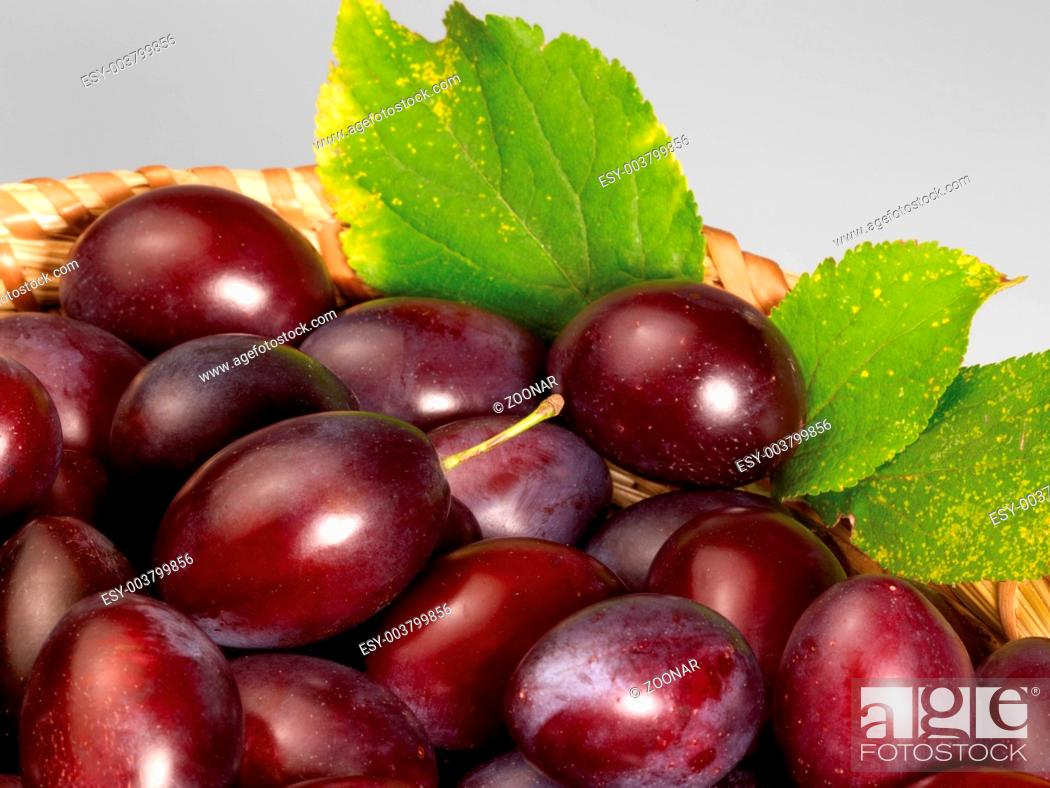 Stock Photo: plums.