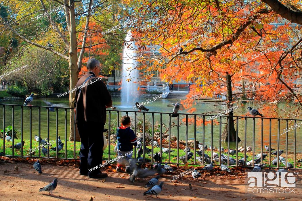 Stock Photo: An elder man and his grandson play with pigeons and gooses beside the pond of Palacio de Cristal in Madrid's Retiro Park.