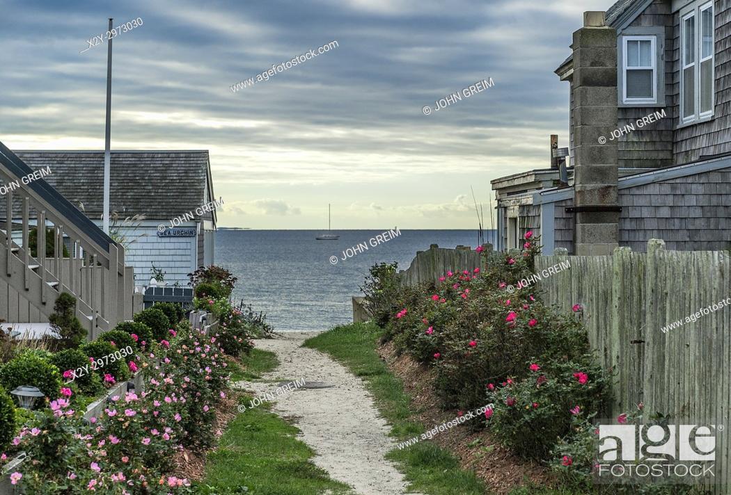 Stock Photo: Path to the beach, Provincetown, Cape Cod, Massachusetts, USA.