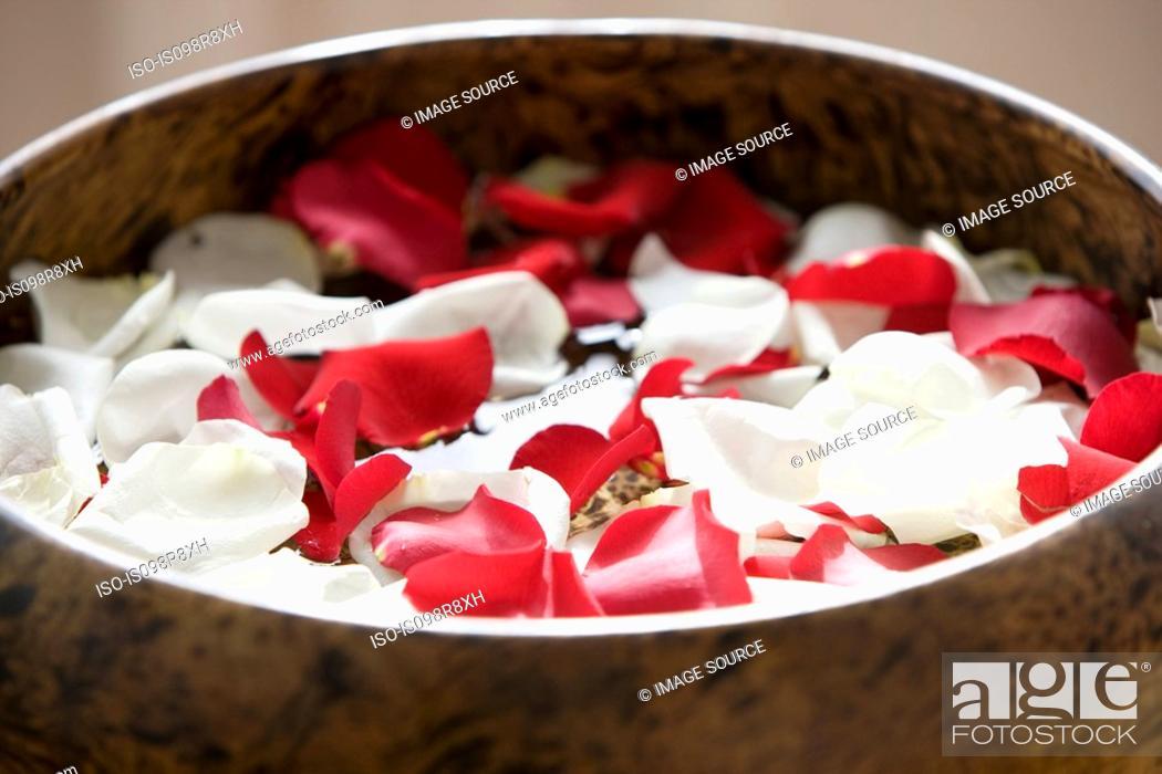 Stock Photo: Petals in a bowl.