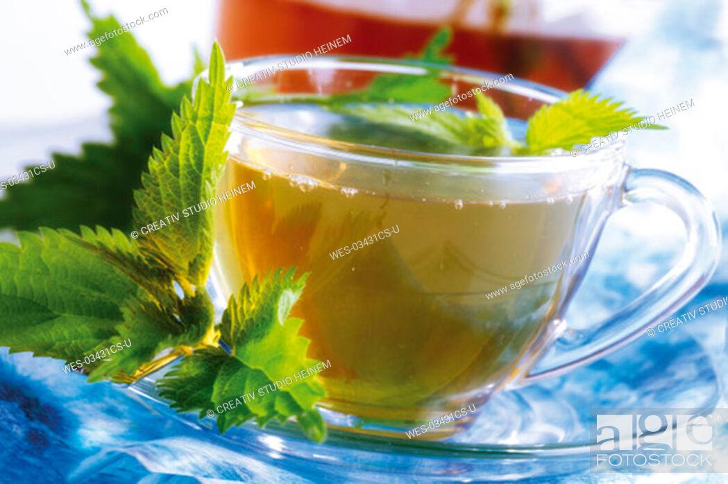 Stock Photo: Stinging nettle tea.