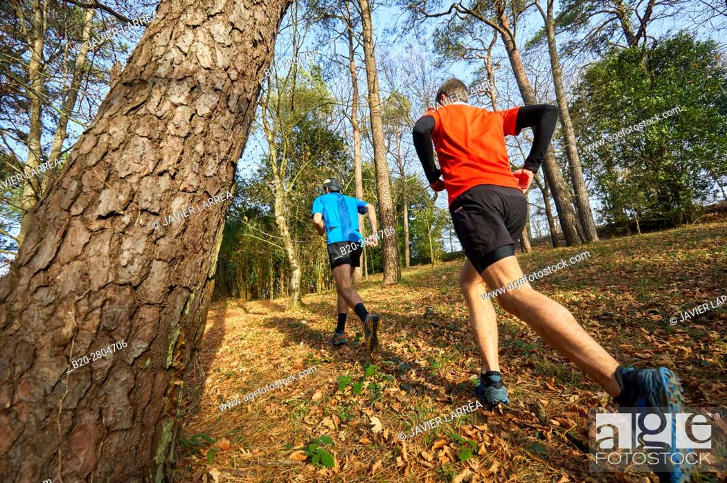 Stock Photo: Trial, Running in the forest, Mount Ulia, Donostia, San Sebastian, Gipuzkoa, Basque Country, Spain, Europe.