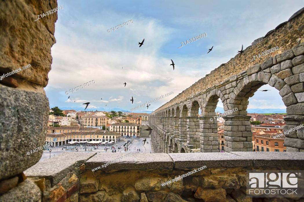 Photo de stock: Swifts flying over the Roman aqueduct. UNESCO World Heritage Site. Segovia. Castile and Leon. Spain.