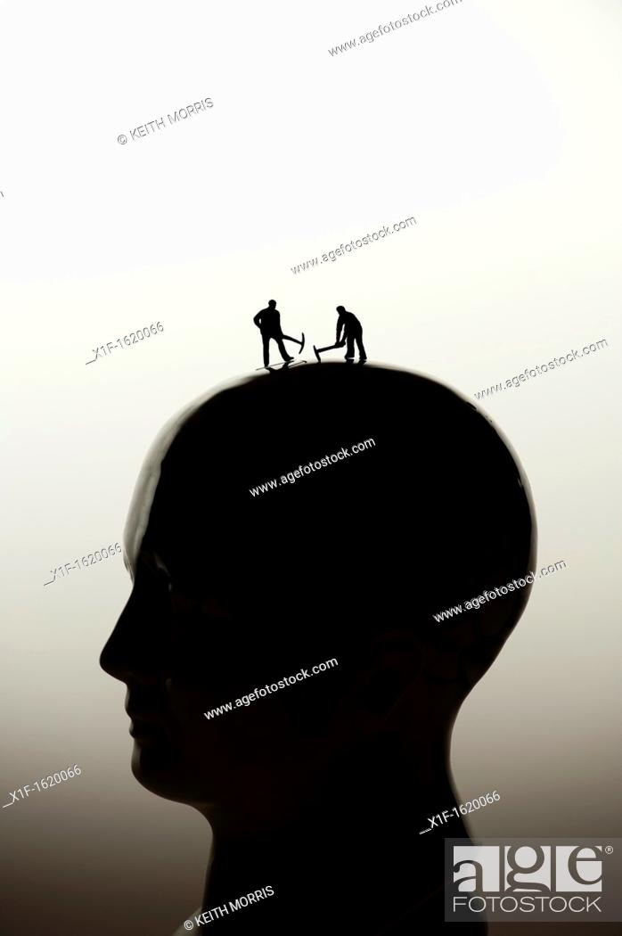 Stock Photo: picking your brains, brain surgery, concept conceptual - small figures digging on a phrenology head.