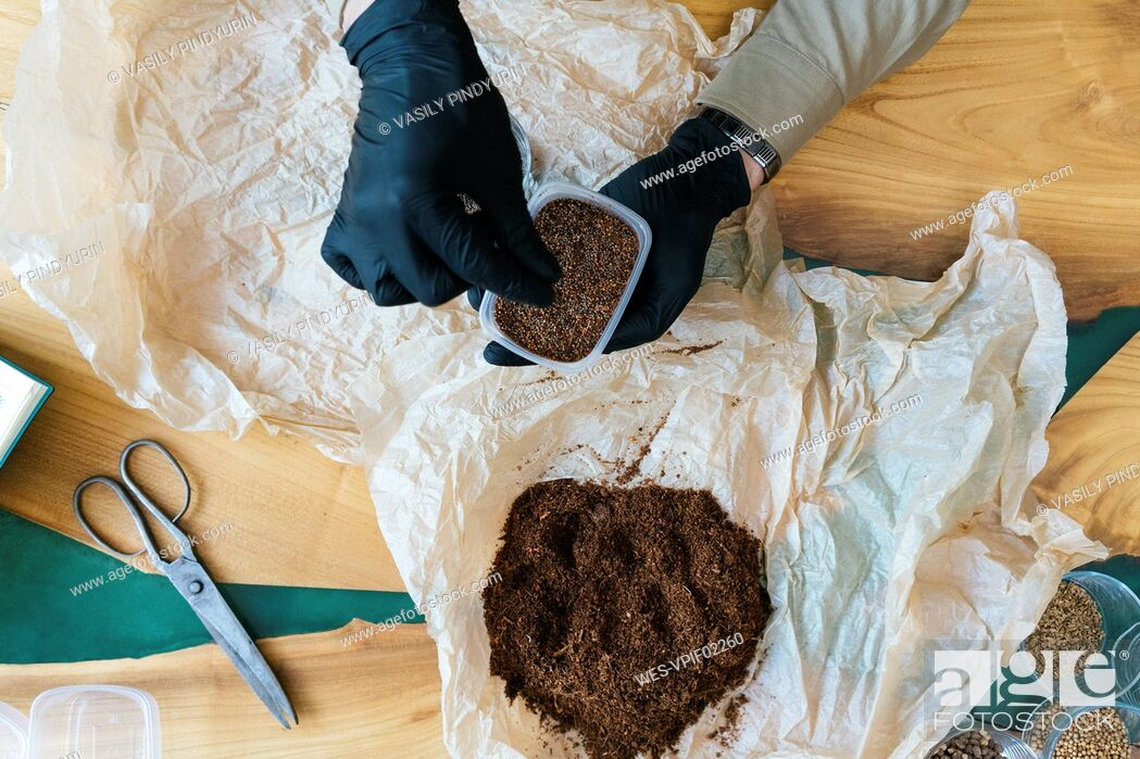 Stock Photo: Close-up of man working on soil for microgreens.