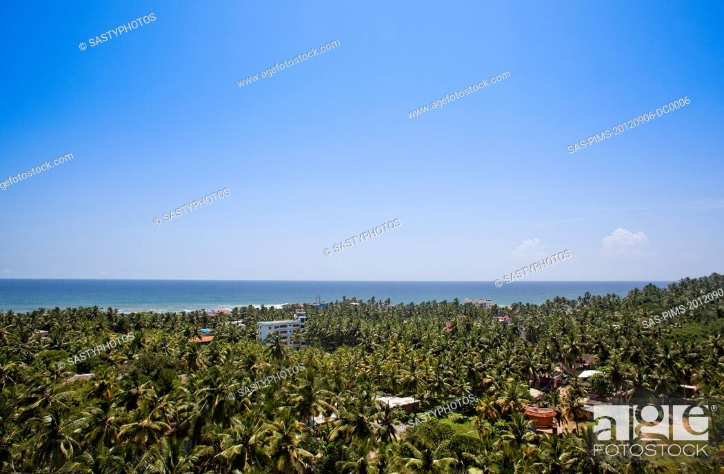 Stock Photo: Palm trees on the beach, Kovalam, Kerala, India.