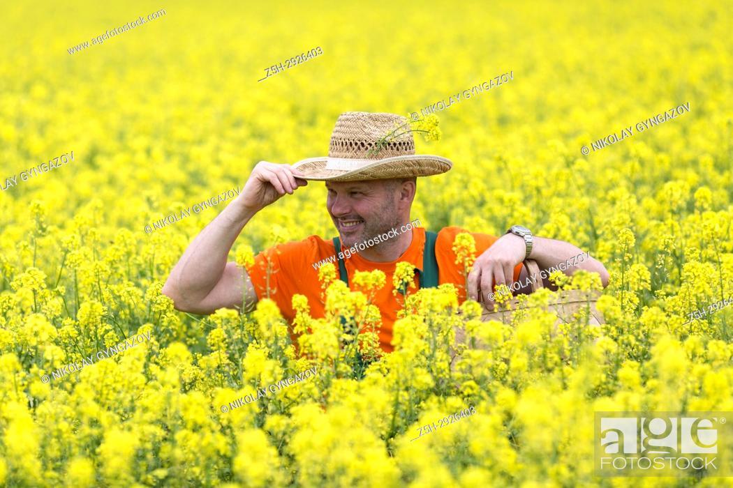 Stock Photo: A farmer in a mustard field.
