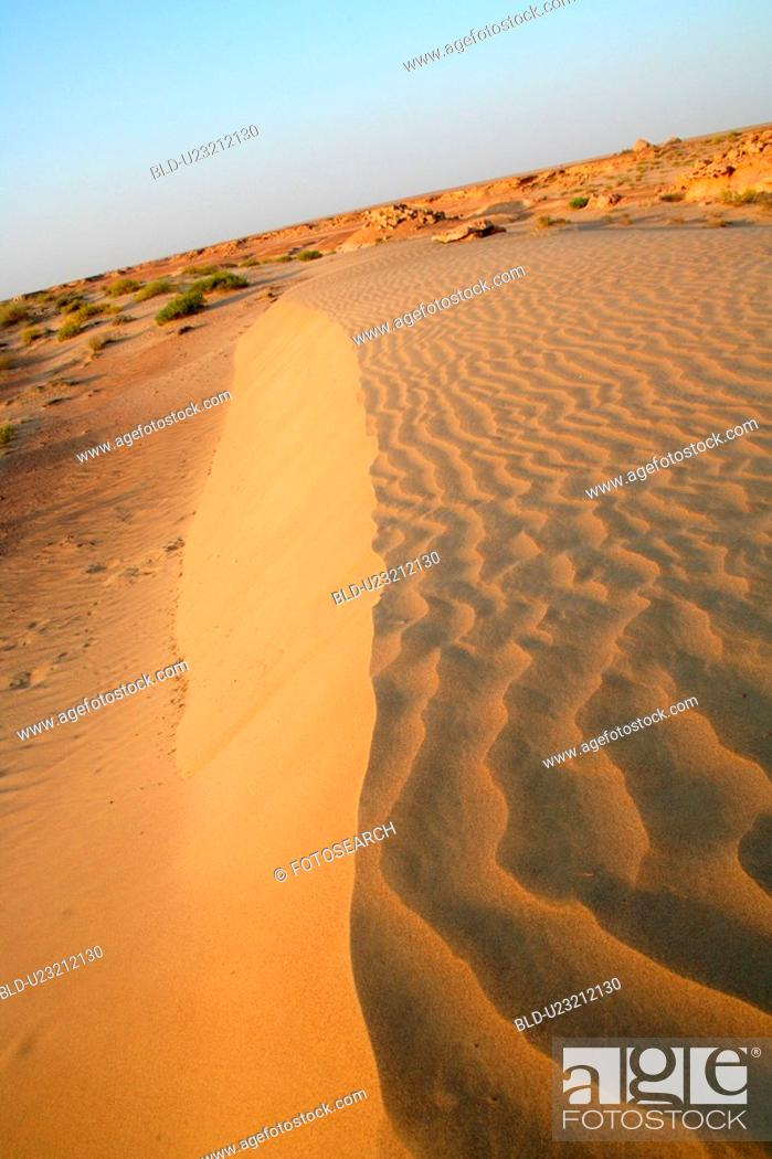 Stock Photo: desert, sand.