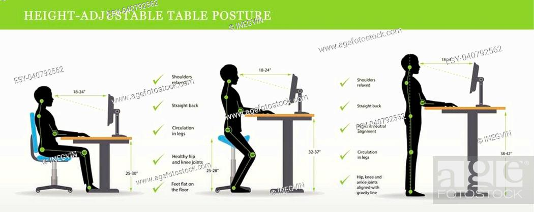 Stock Vector: Height Adjustable and Standing Desks correct poses. Ergonomics healthy postures.