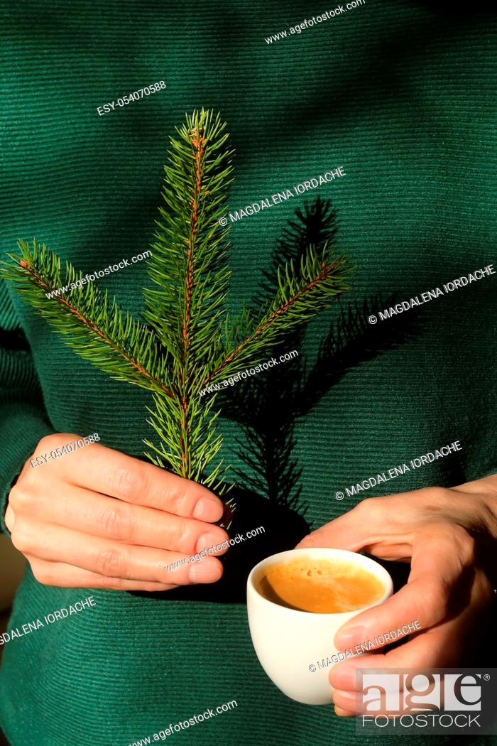 Stock Photo: Woman is holding pine tree branch and an espresso cup.