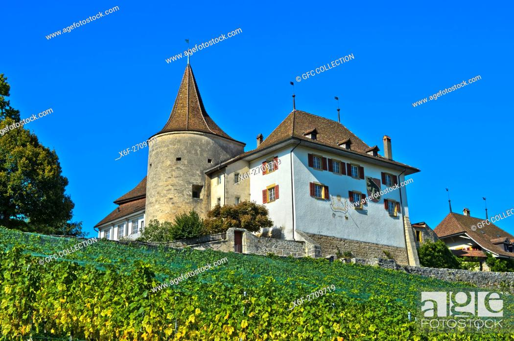 Photo de stock: Erlach Castle, municipality of Erlach, Canton of Bern, Switzerland.