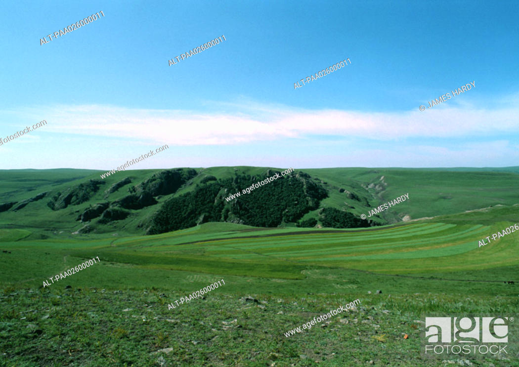 Stock Photo: Mongolia, grassy plain with grass covered cliff.