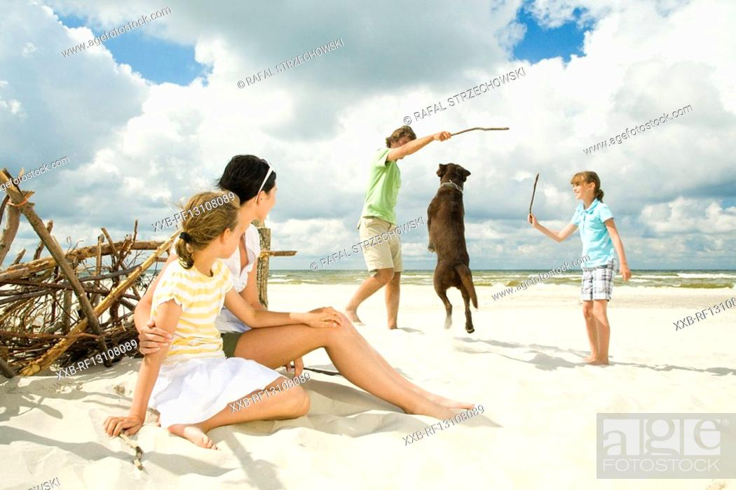 Stock Photo: family on beach playing with dog.