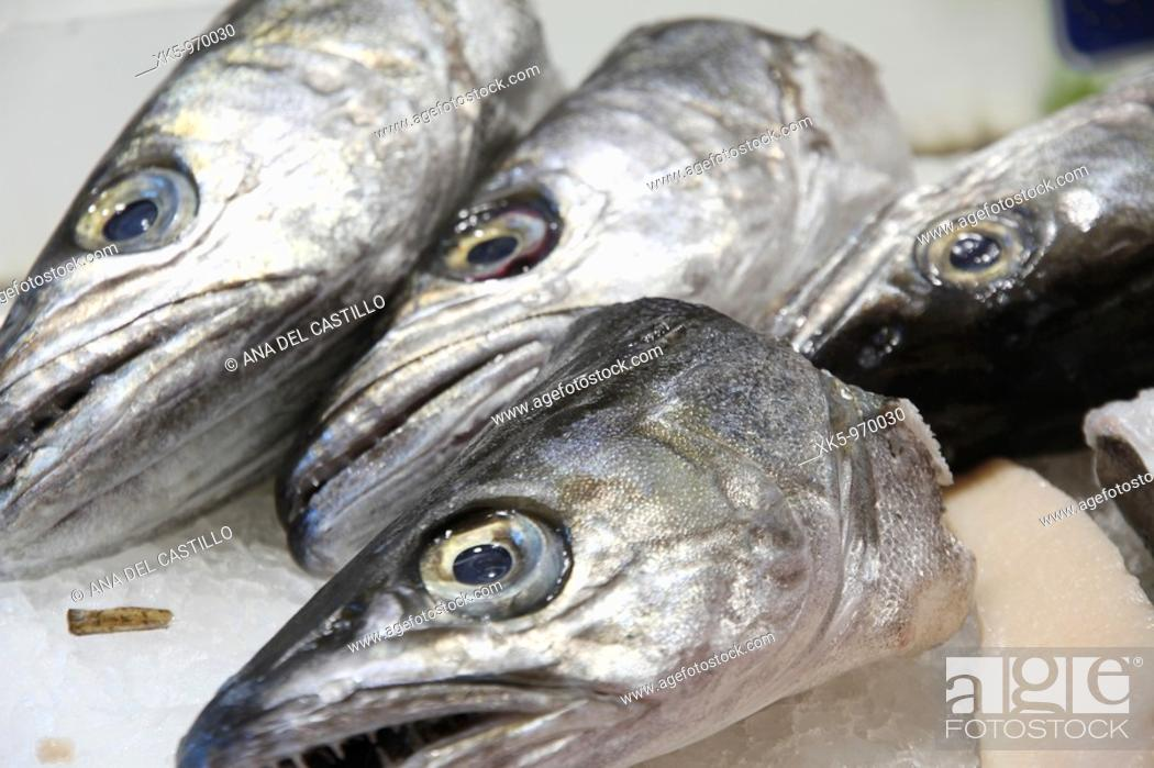 Photo de stock: Heads of hakes at a fishmonger's,Burjassot market,Valencia province, Spain.