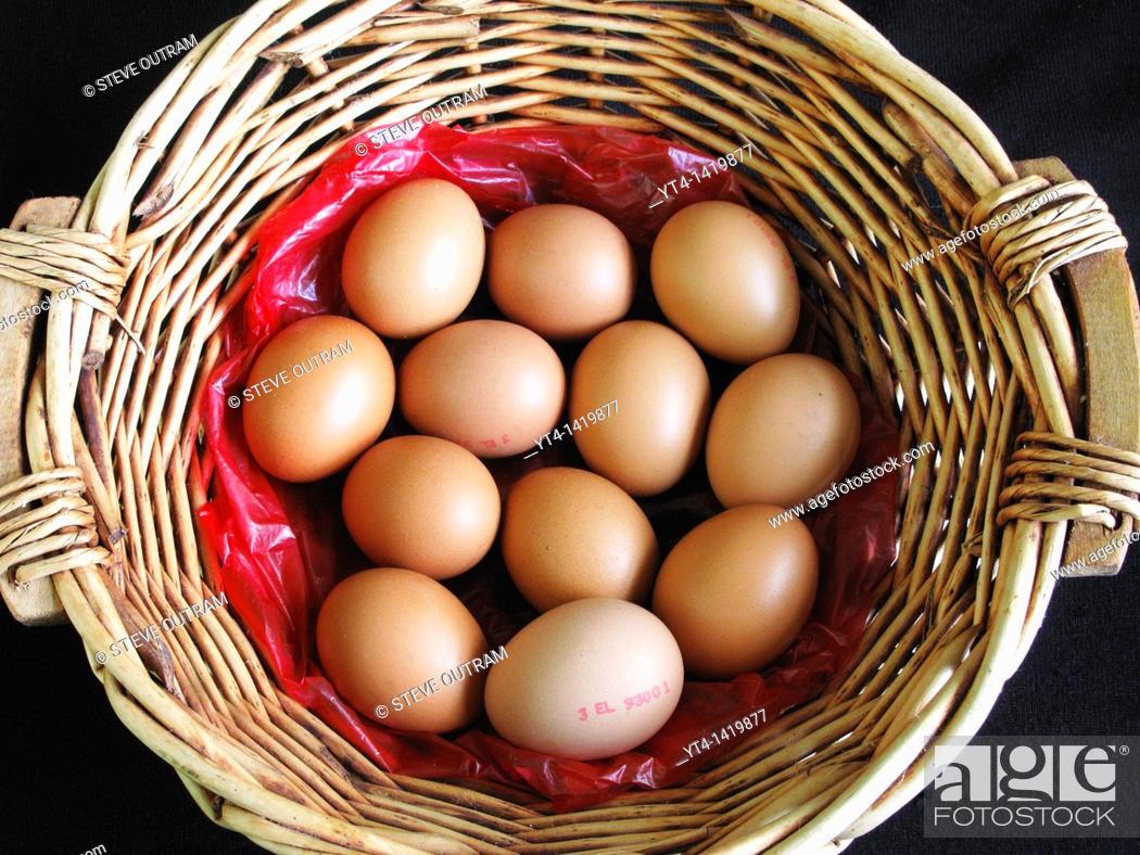Stock Photo: A Basket of Fresh Eggs.