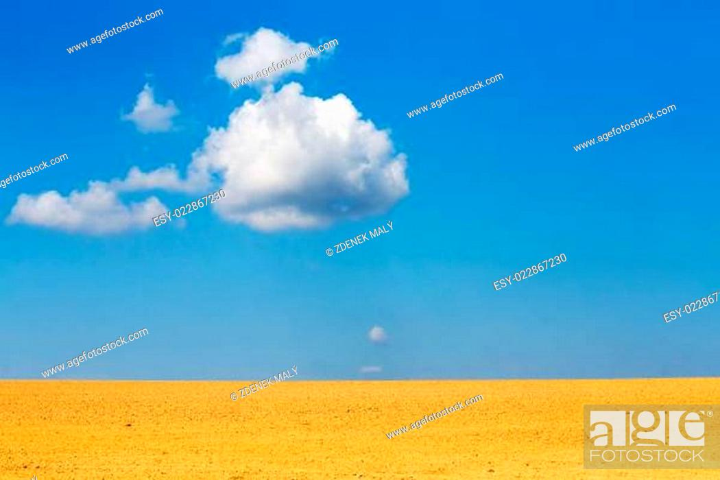 Photo de stock: Nice autumn field with white cloud, horizont and blue sky.